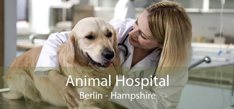 Animal Hospital Berlin - Hampshire