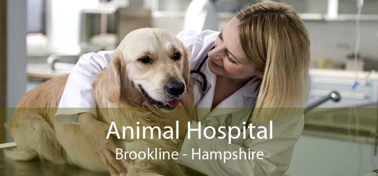 Animal Hospital Brookline - Hampshire