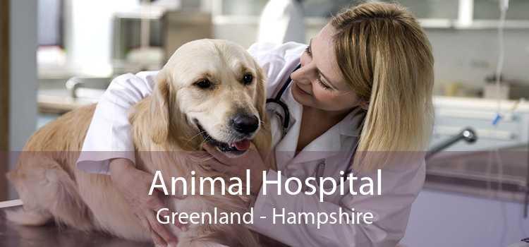 Animal Hospital Greenland - Hampshire