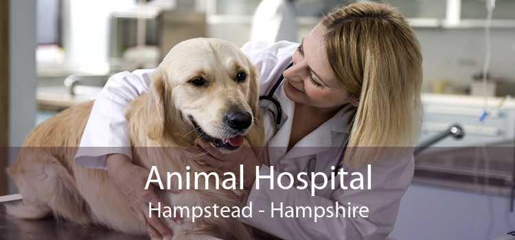 Animal Hospital Hampstead - Hampshire