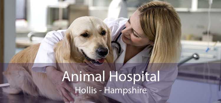 Animal Hospital Hollis - Hampshire