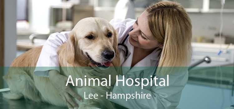 Animal Hospital Lee - Hampshire