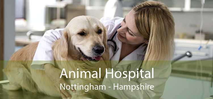 Animal Hospital Nottingham - Hampshire