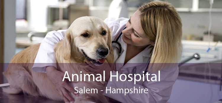 Animal Hospital Salem - Hampshire