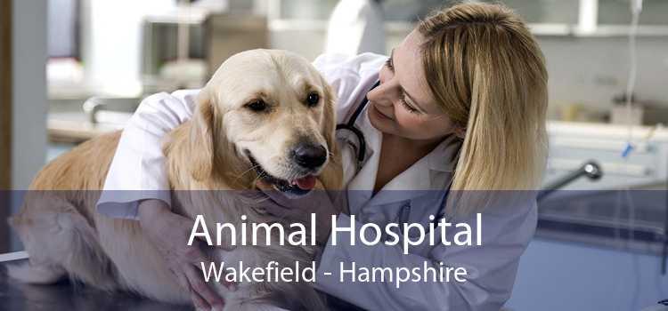 Animal Hospital Wakefield - Hampshire