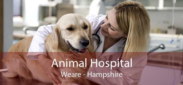 Animal Hospital Weare - Hampshire