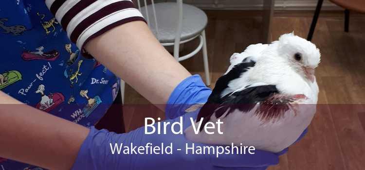 Bird Vet Wakefield - Hampshire