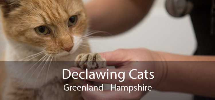 Declawing Cats Greenland - Hampshire
