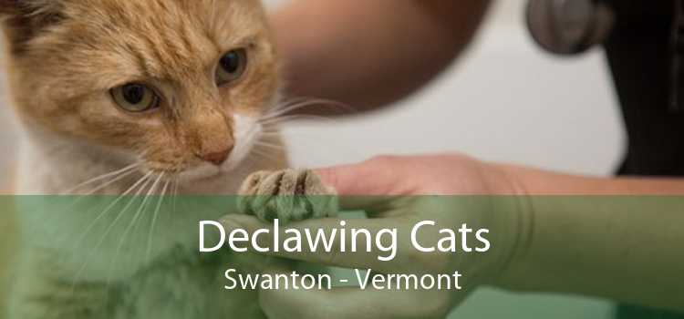 Declawing Cats Swanton - Vermont