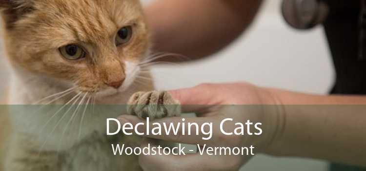 Declawing Cats Woodstock - Vermont