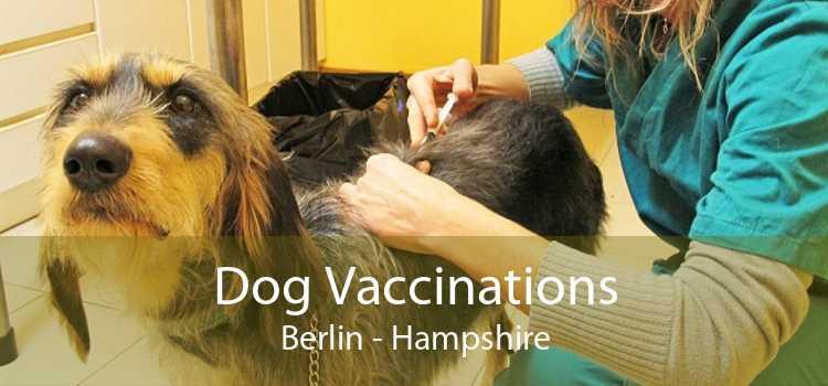 Dog Vaccinations Berlin - Hampshire