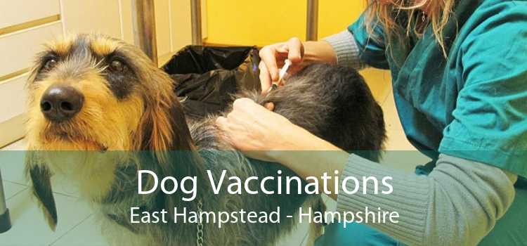 Dog Vaccinations East Hampstead - Hampshire