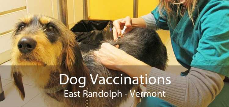 Dog Vaccinations East Randolph - Vermont