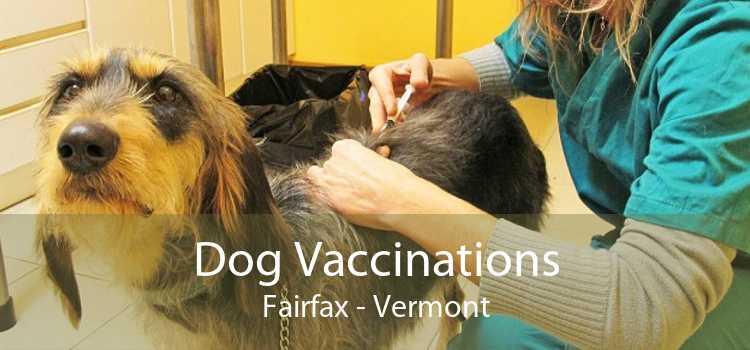 Dog Vaccinations Fairfax - Vermont