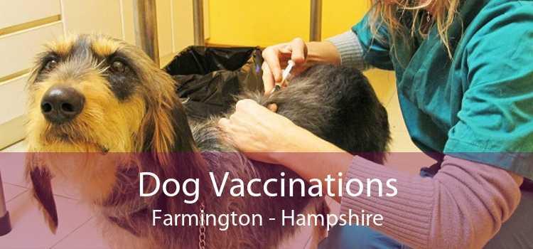 Dog Vaccinations Farmington - Hampshire
