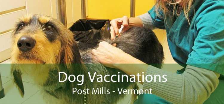 Dog Vaccinations Post Mills - Vermont