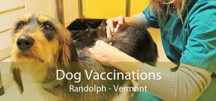 Dog Vaccinations Randolph - Vermont