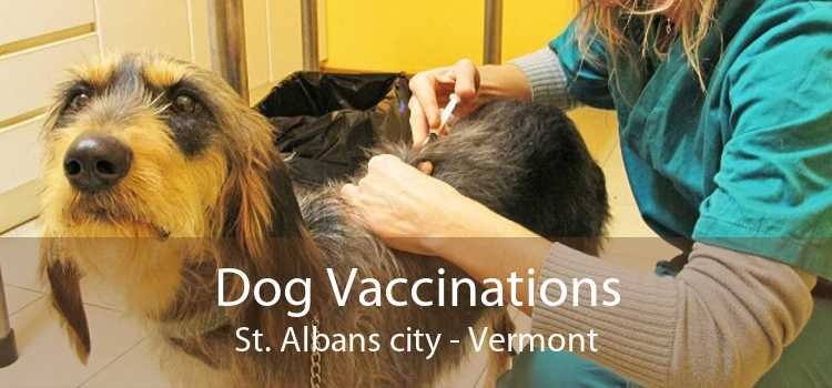 Dog Vaccinations St. Albans city - Vermont