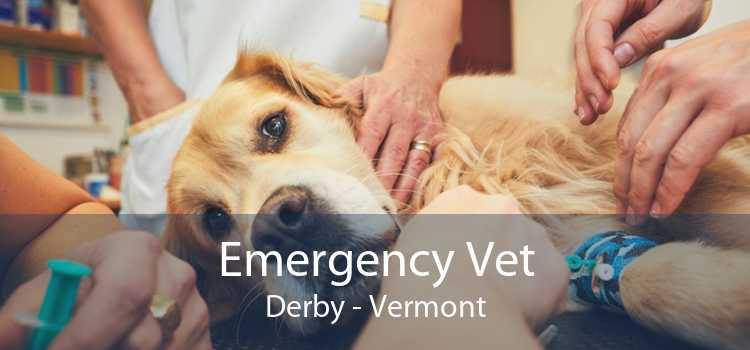 Emergency Vet Derby - Vermont
