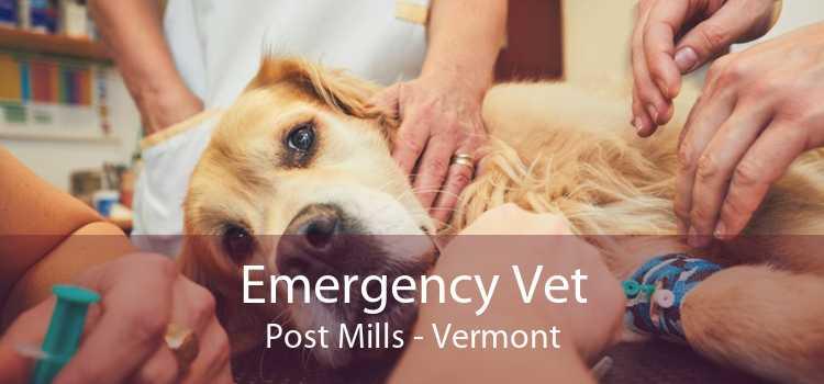 Emergency Vet Post Mills - Vermont