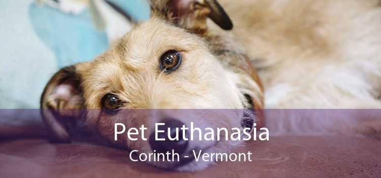 Pet Euthanasia Corinth - Vermont