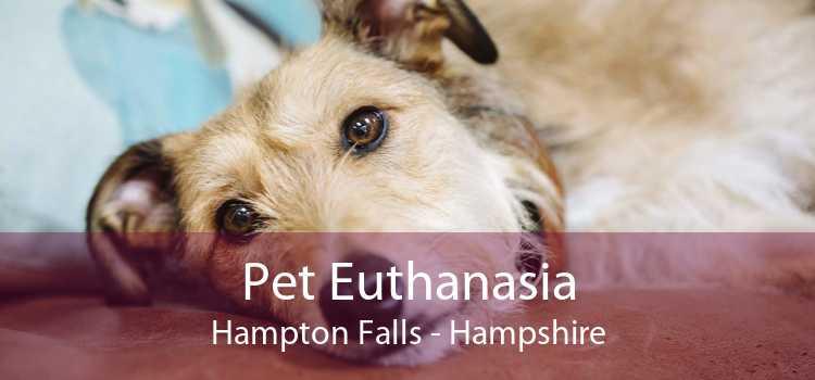 Pet Euthanasia Hampton Falls - Hampshire