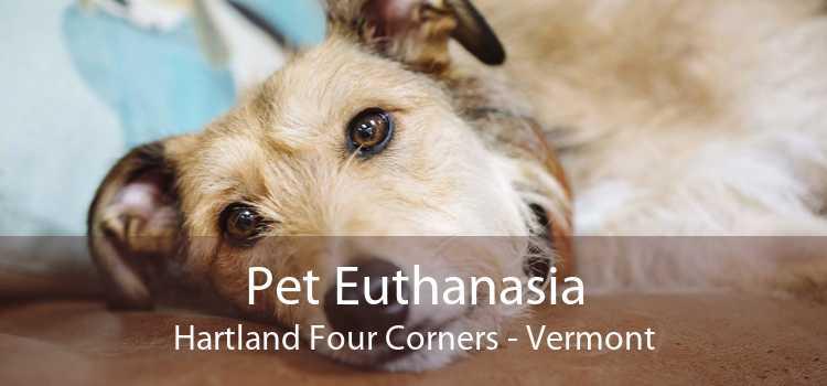 Pet Euthanasia Hartland Four Corners - Vermont
