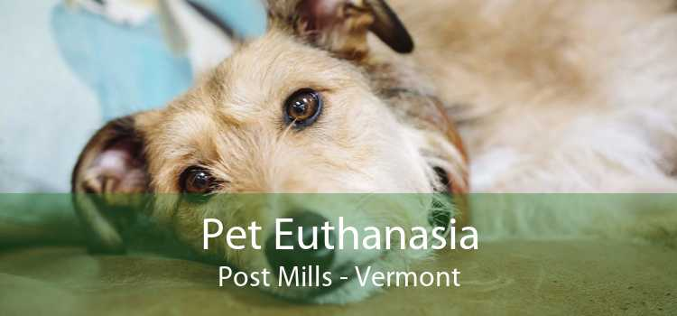 Pet Euthanasia Post Mills - Vermont