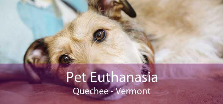 Pet Euthanasia Quechee - Vermont