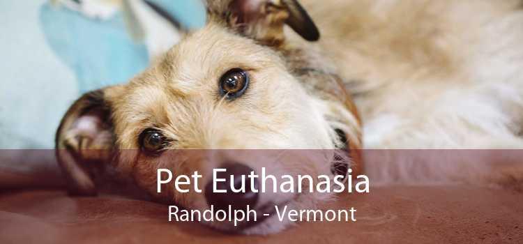 Pet Euthanasia Randolph - Vermont