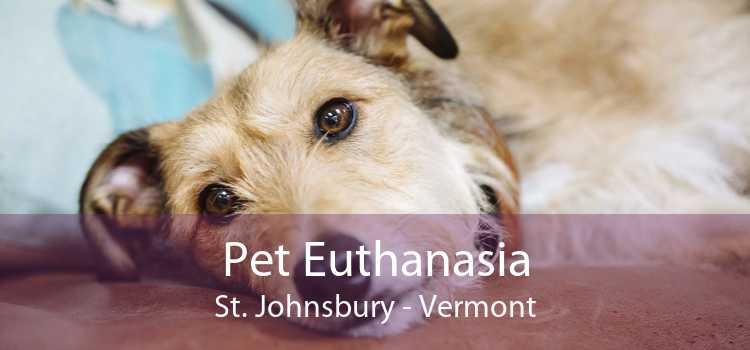 Pet Euthanasia St. Johnsbury - Vermont