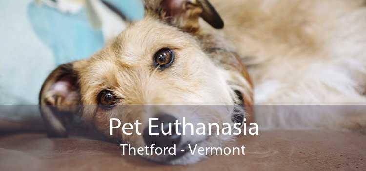 Pet Euthanasia Thetford - Vermont