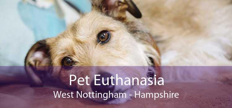 Pet Euthanasia West Nottingham - Hampshire