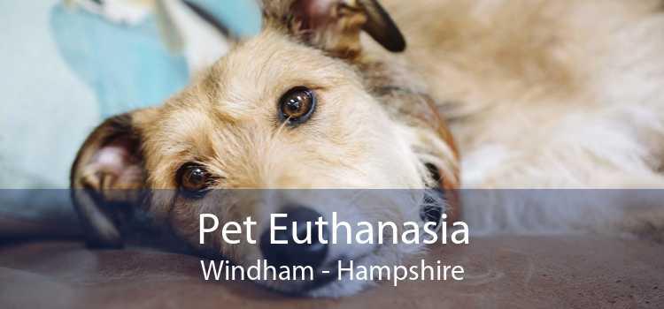 Pet Euthanasia Windham - Hampshire