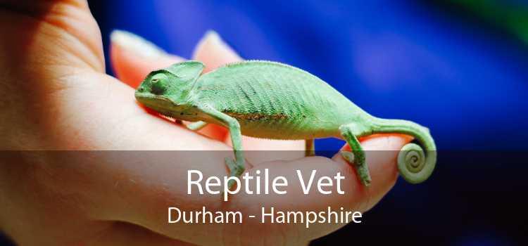 Reptile Vet Durham - Hampshire