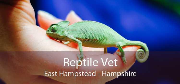 Reptile Vet East Hampstead - Hampshire
