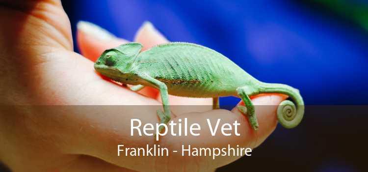 Reptile Vet Franklin - Hampshire