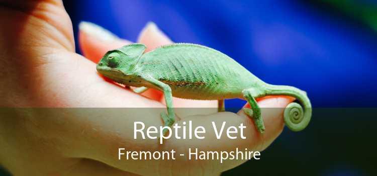 Reptile Vet Fremont - Hampshire