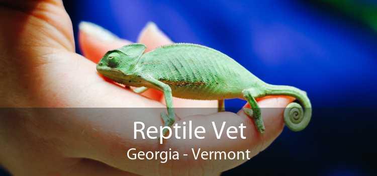 Reptile Vet Georgia - Vermont