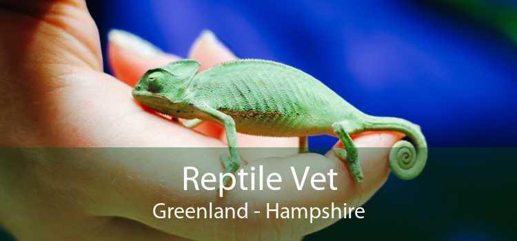 Reptile Vet Greenland - Hampshire