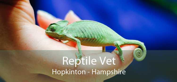 Reptile Vet Hopkinton - Hampshire
