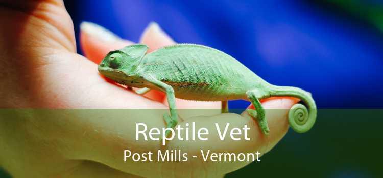 Reptile Vet Post Mills - Vermont