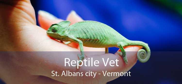 Reptile Vet St. Albans city - Vermont