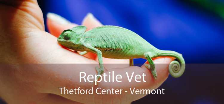 Reptile Vet Thetford Center - Vermont