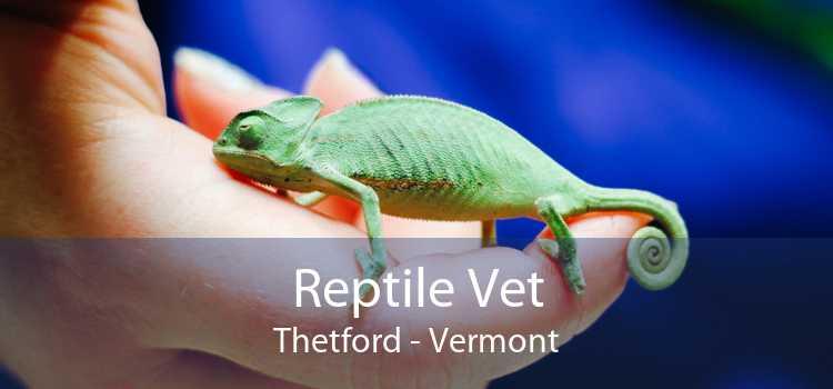 Reptile Vet Thetford - Vermont