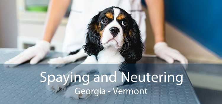 Spaying and Neutering Georgia - Vermont