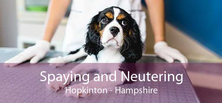 Spaying and Neutering Hopkinton - Hampshire