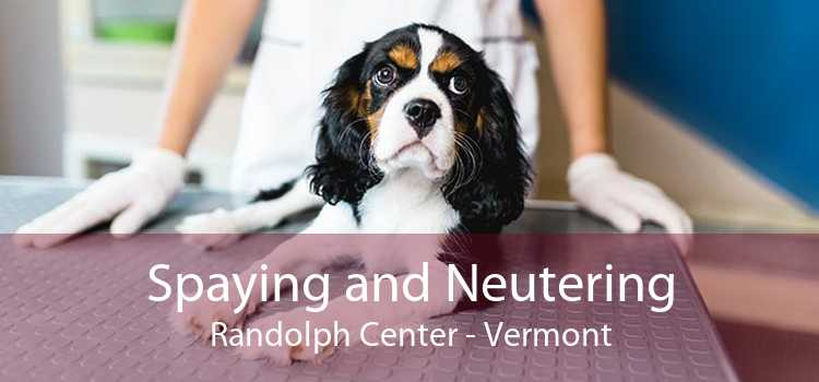 Spaying and Neutering Randolph Center - Vermont