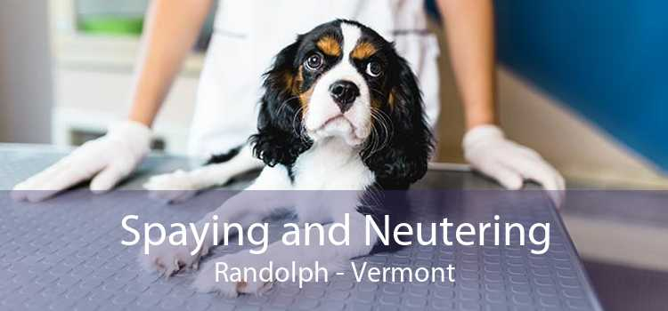 Spaying and Neutering Randolph - Vermont