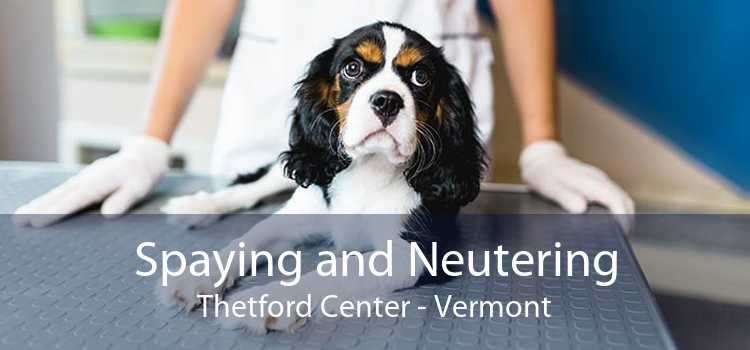 Spaying and Neutering Thetford Center - Vermont
